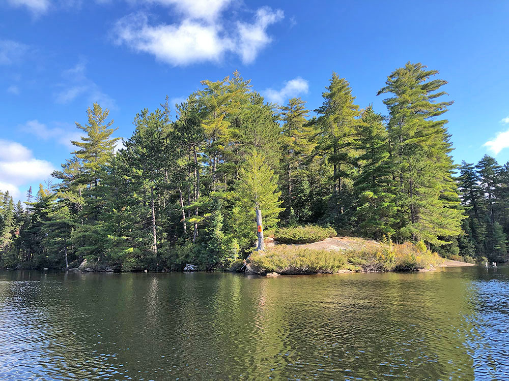 View of campsite 37 on Burnt Island Lake in Algonquin Park from the water