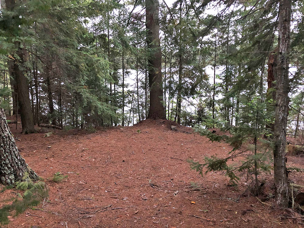 Large tent spot option in a sheltered area of anchor island on Burntroot Lake