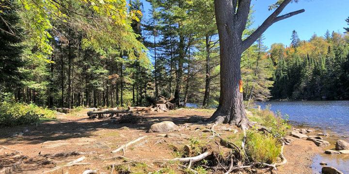Joe Lake East Arm – Campsite #5