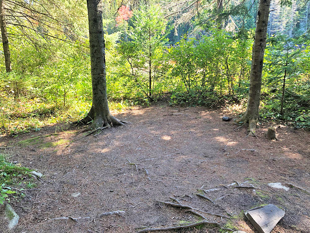 Large area to pitch a tent on Joe Lake East Arm campsite 5