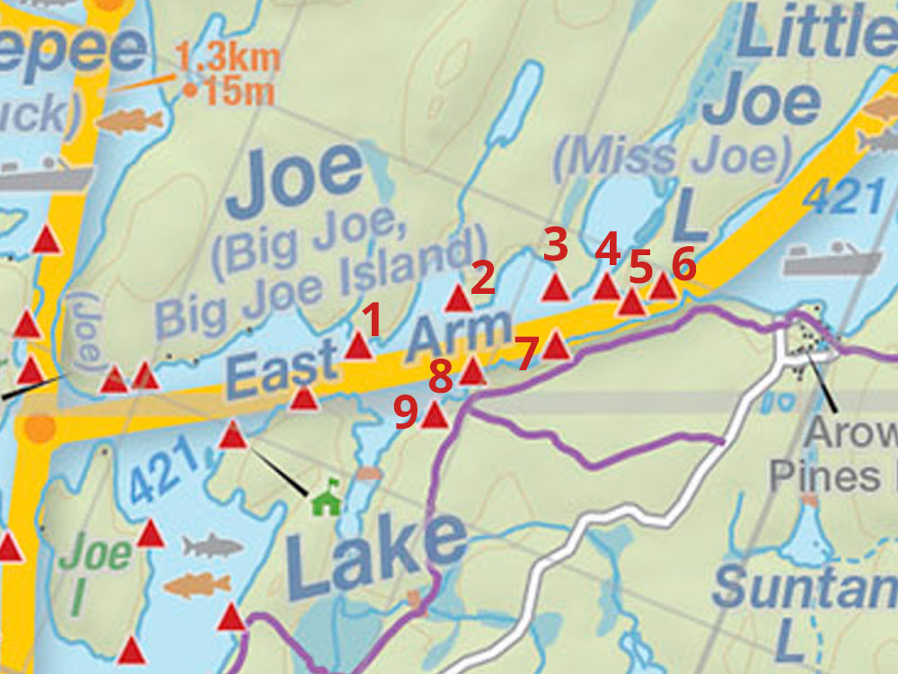 Map of campsites on Joe Lake's East Arm in Algonquin Park