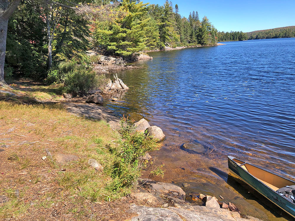 Shoreline and canoe landing area for Joe Lake campsite 2 in Algonquin