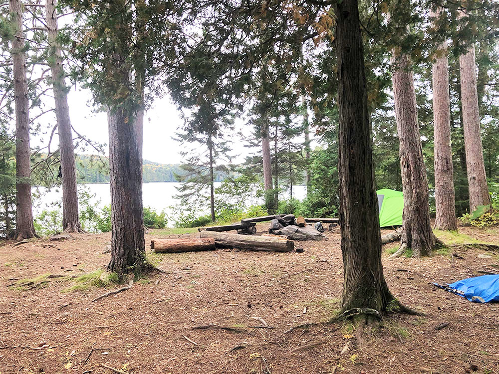 Interior of campsite 4 on Little Otterslide Lake in Algonquin Park