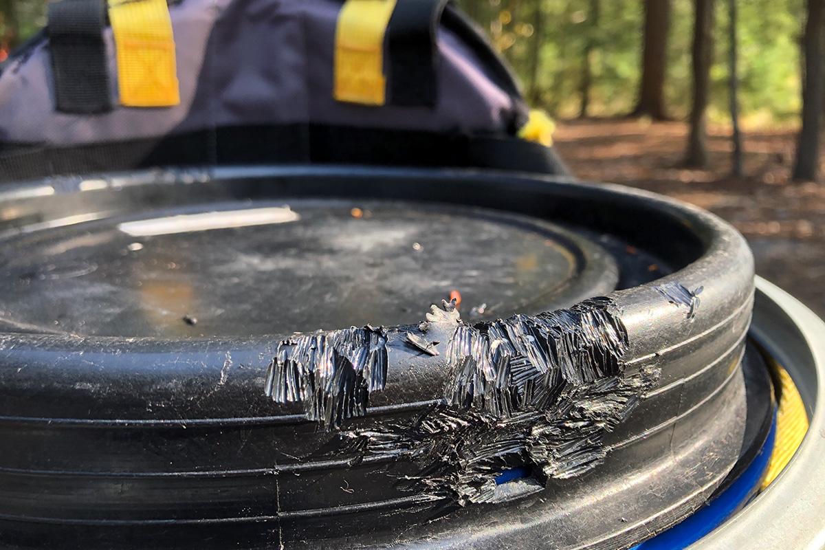 Chipmunk scratches on blue food barrel black lid