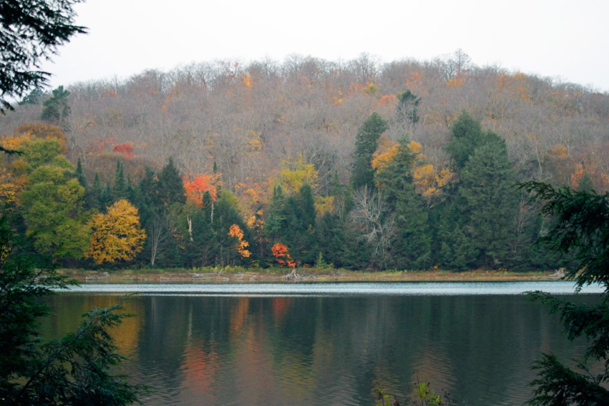 Morning fall colours on Ragged Lake in Algonquin Park 2020