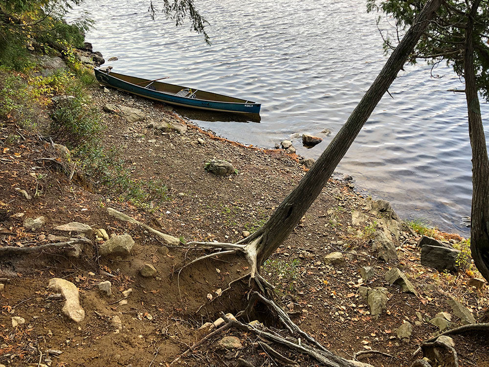 Inaccessible canoe landing on Ragged Lake campsite #13 in Algonquin Park