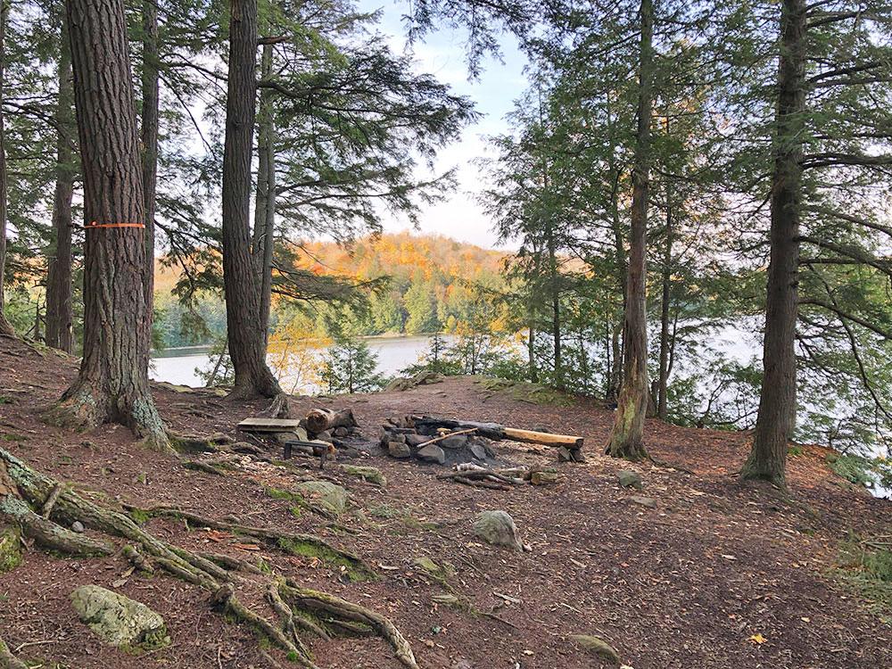 Interior of campsite #13 on Ragged Lake in Algonquin Park