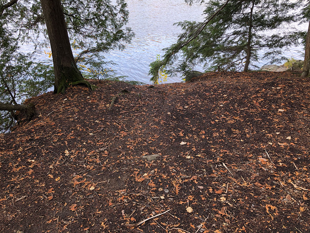 Flat ground to pitch a tent on Ragged Lake campsite #13