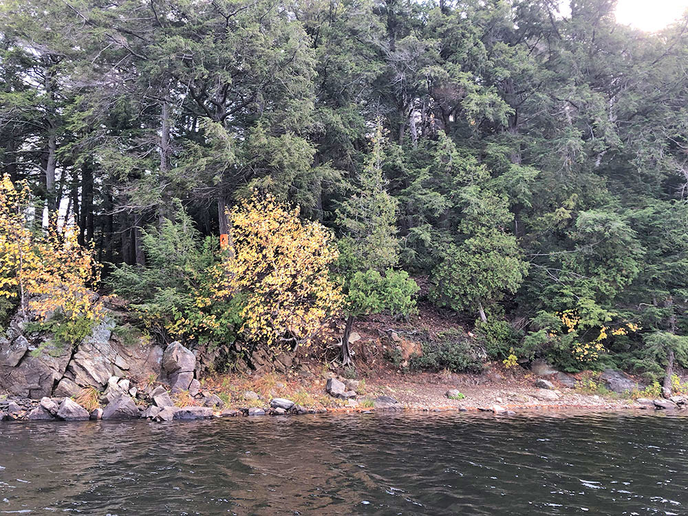 View of campsite #13 on Ragged Lake from the water