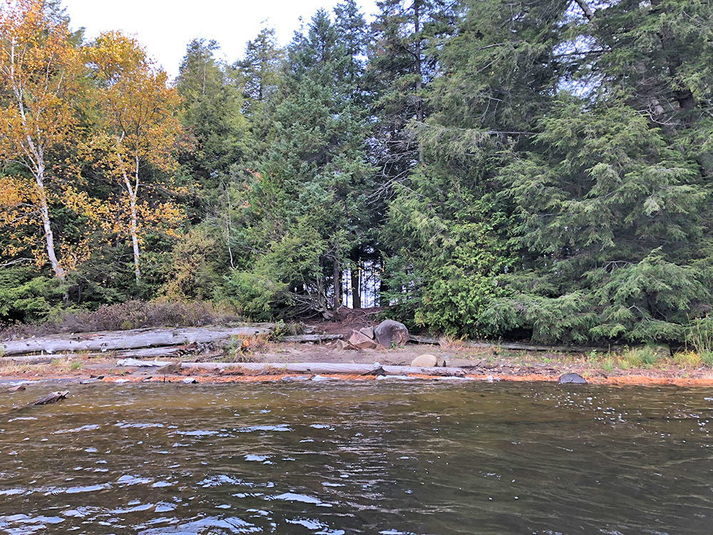 View from the water on the west side of Ragged Lake Campsie #14 in Algonquin Park