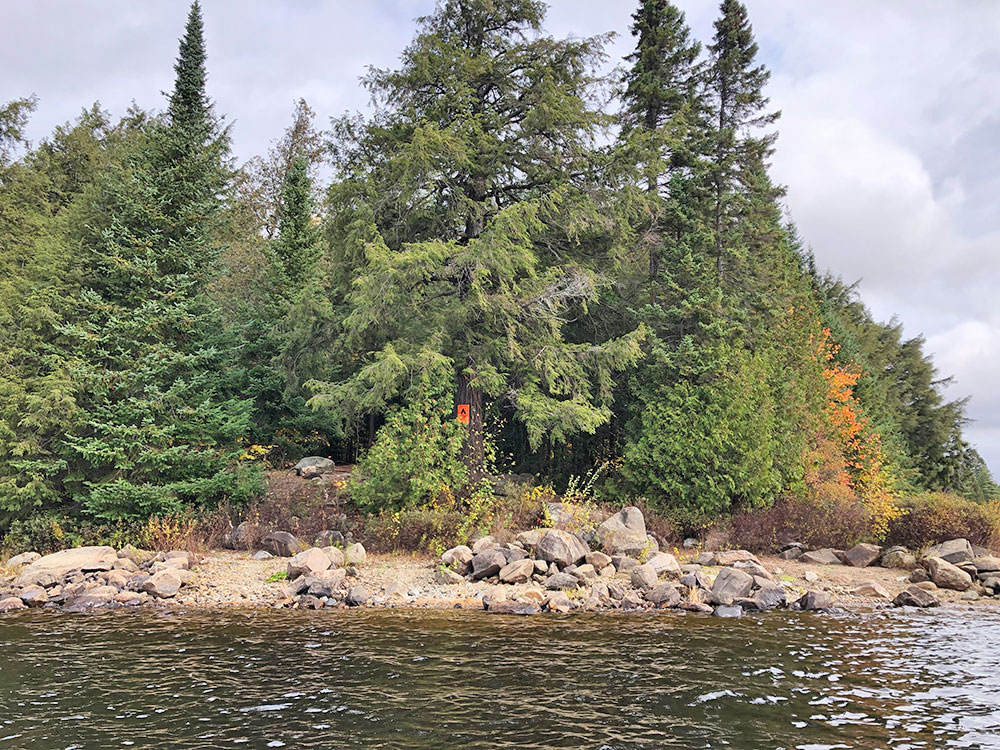 View of campsite #15 on Ragged Lake from the water