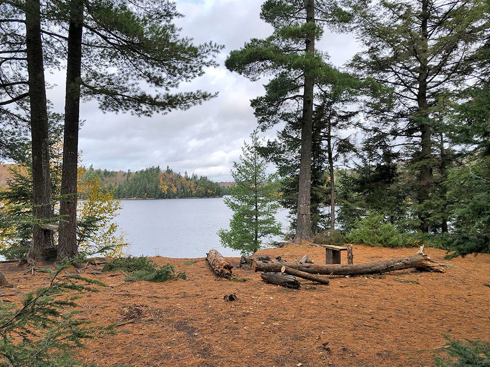 Interior of campsite #16 on Ragged Lake looking towards the water