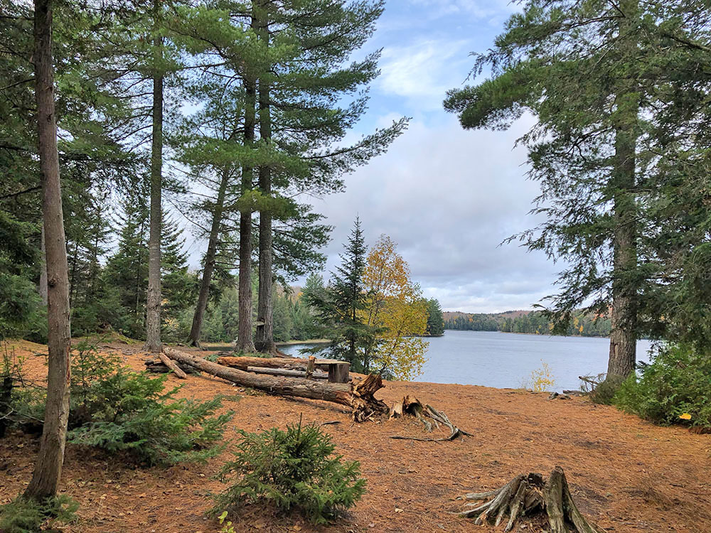 Interior of campsite #16 on Ragged Lake in Algonquin Park
