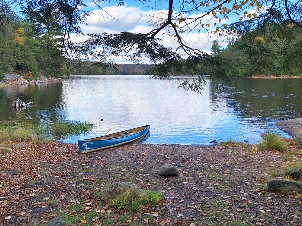 Canoe landing on Ragged Lake campsite #20 in Algonquin Park