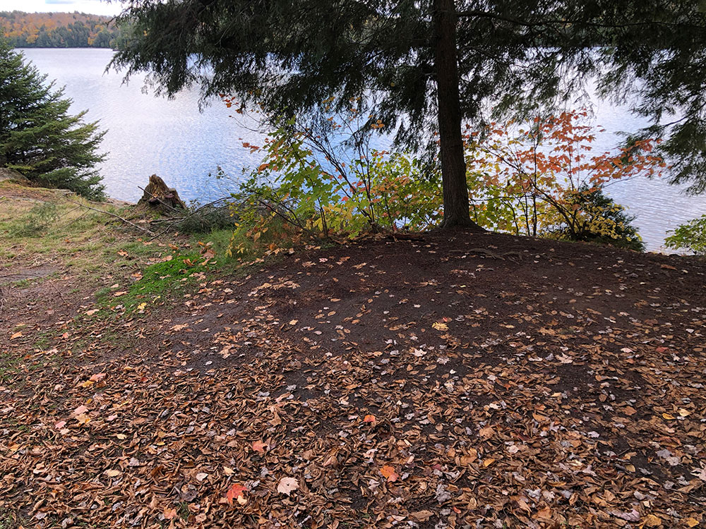 Large flat area to pitch a tent on Ragged Lake campsite #20
