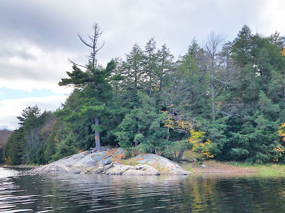 View of campsite #20 on Ragged Lake in Algonquin Park from the water
