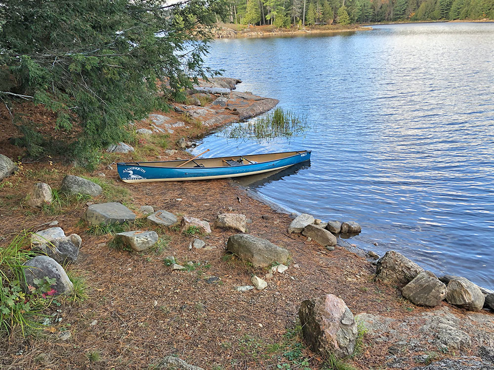 Accessible canoe landing on Ragged Lake campsite #21 in Algonquin Park
