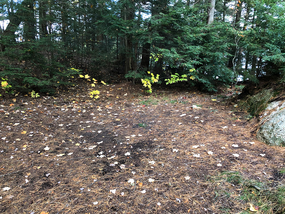 Large area to pitch a tent on Ragged Lake campsite #21