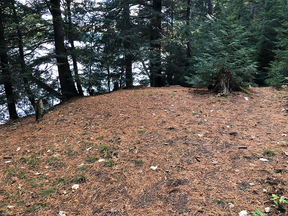 Large tent spot area on Ragged Lake campsite #21