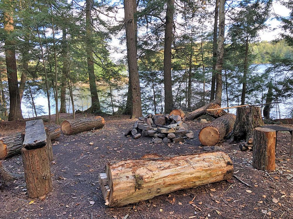 Fire pit and seating area on Ragged Lake campsite #22 with lots of cut down trees surrounding