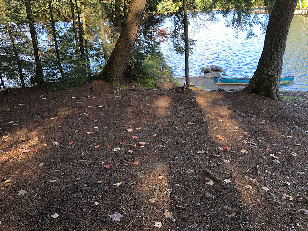 Large flat area to pitch a tent on Ragged Lake campsite #22