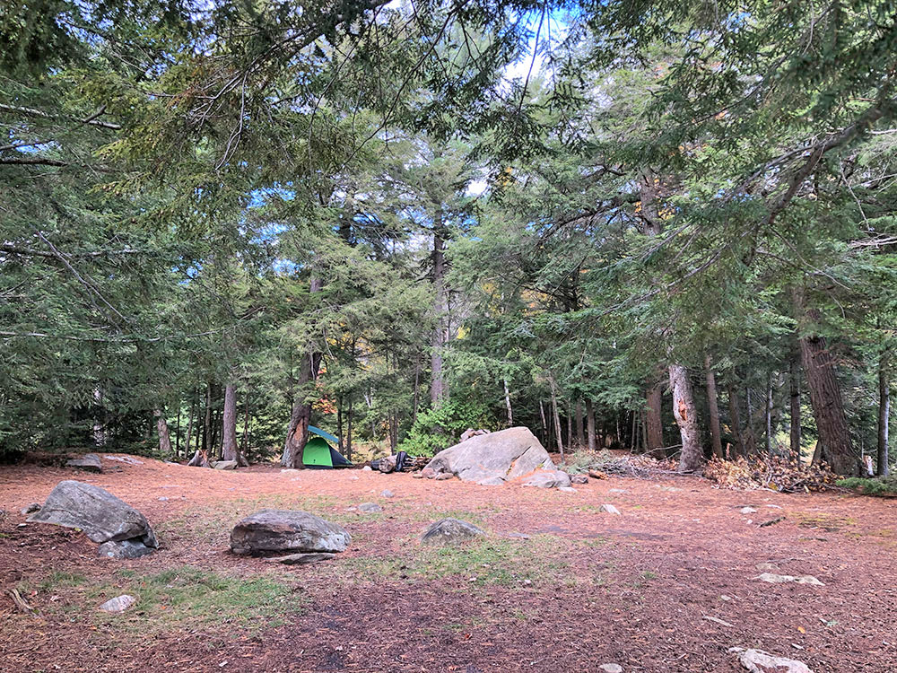 Interior of campsite #3 on Ragged Lake looking inland