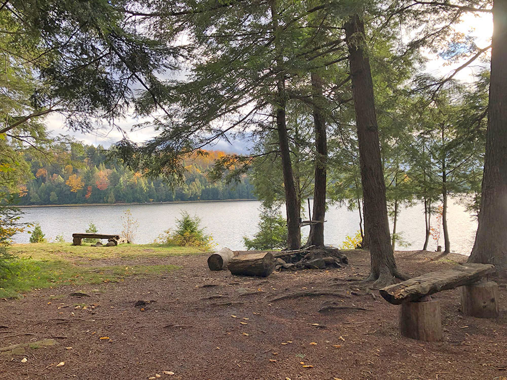 Interior of campsite #4 on Ragged Lake looking out towards the water