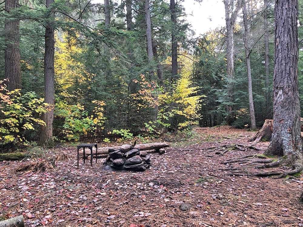 Interior of campsite looking at the fire pit on campsite #8 on Ragged Lake