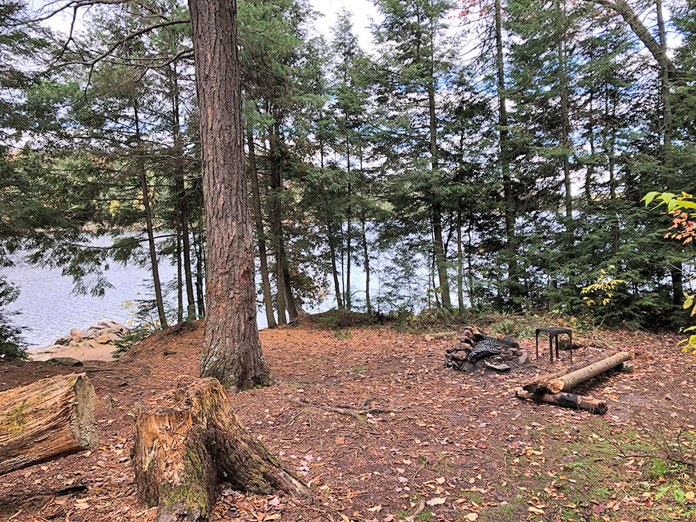 Interior of campsite #8 on Ragged Lake in Algonquin Park