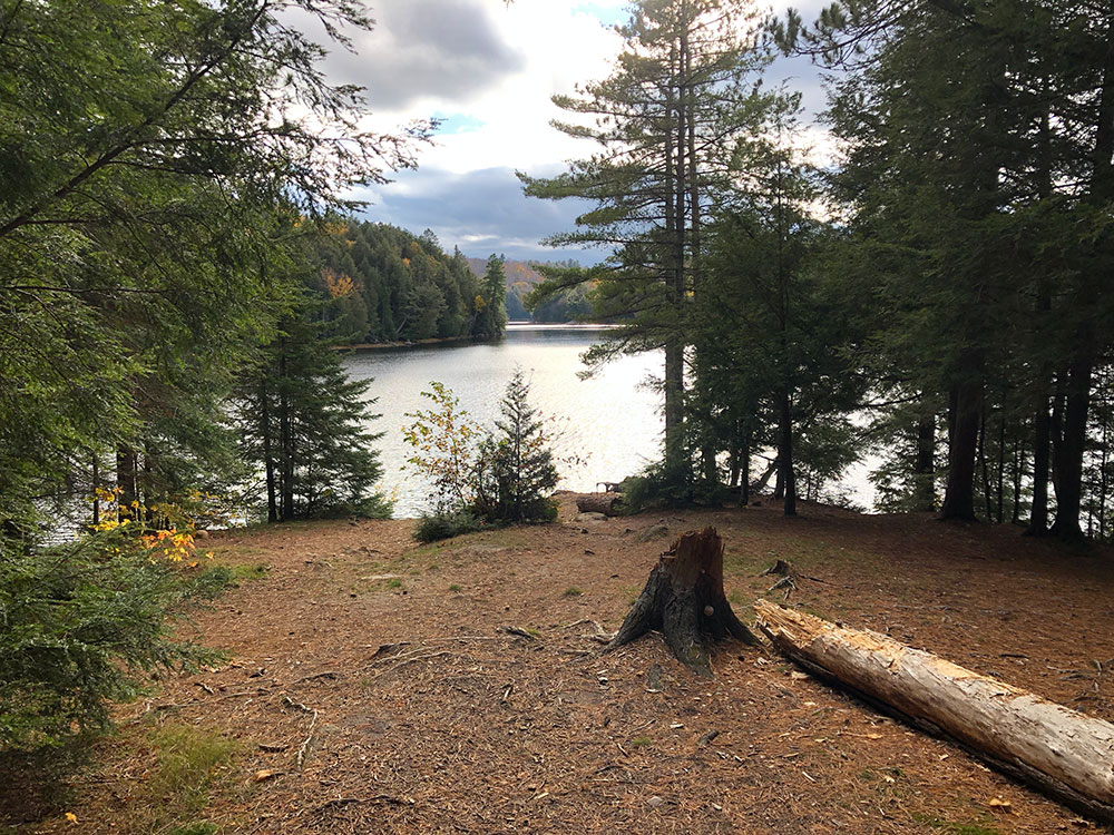 Interior of campsite #9 on Ragged Lake facing the water