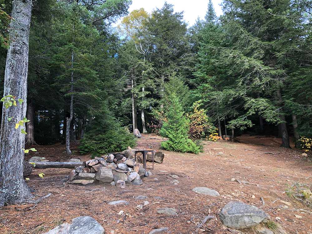Interior of campsite #9 on Ragged Lake looking inland