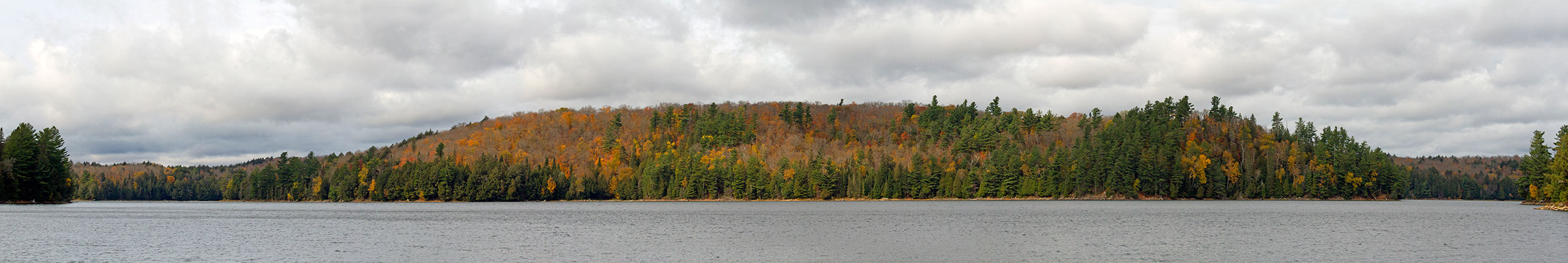 South of Ragged Lake shoreline fall colours during October Thanksgiving