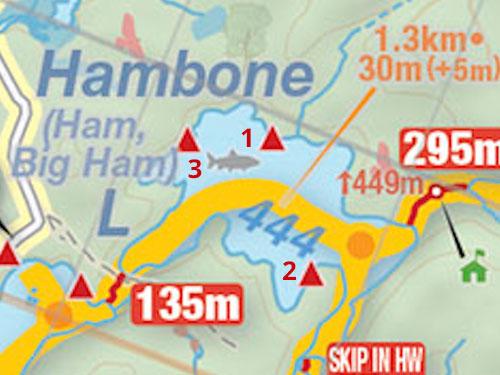 Map of Hambone Lake campsites in Algonquin Park