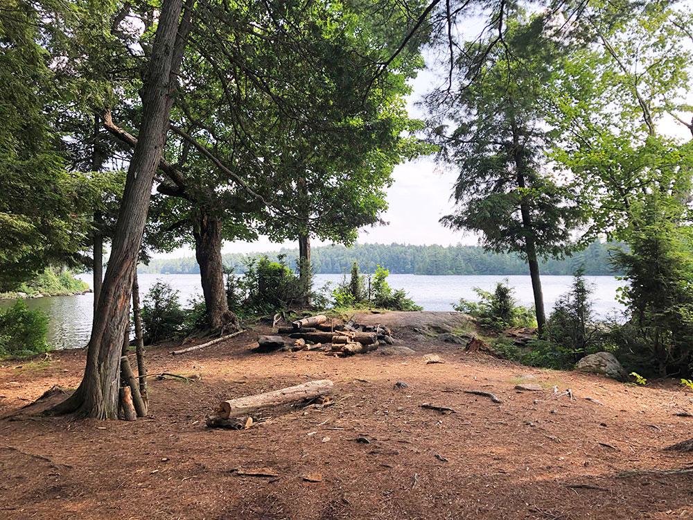 Little Trout Lake Campsite 10 Algonquin Park interior of the campsite