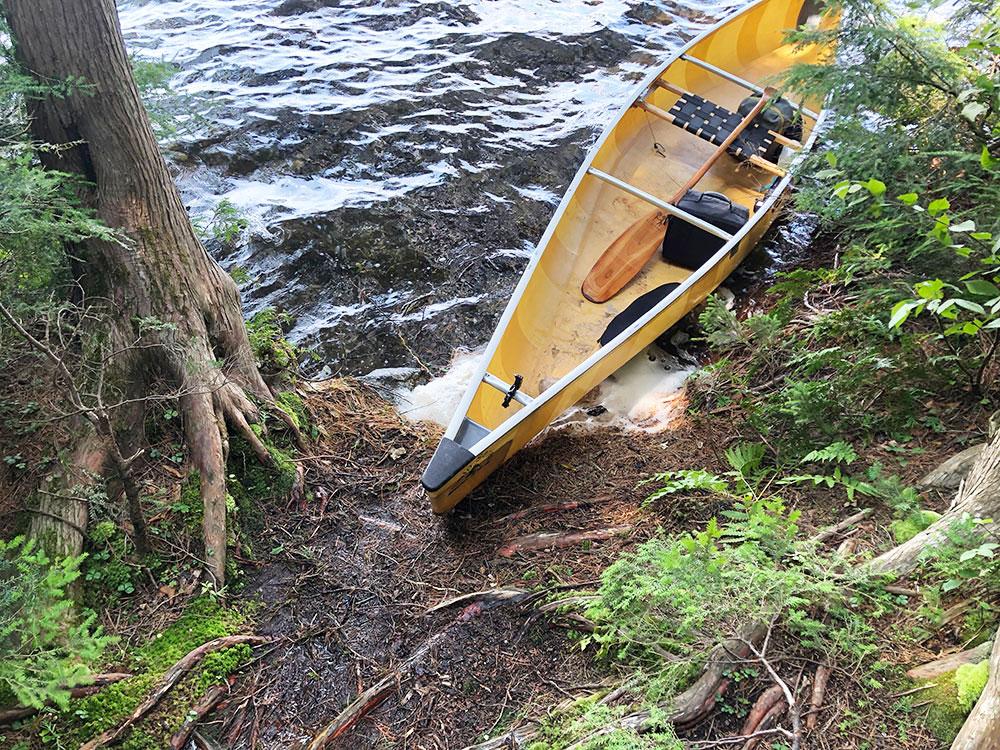 Little Trout Lake Campsite 4 Algonquin Park canoe landing