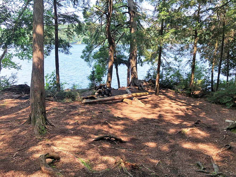 Little Trout Lake Campsite 4 Algonquin Park interior of the campsite