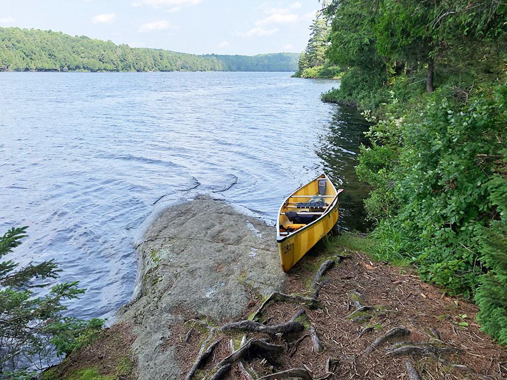 Little Trout Lake Campsite 5 Algonquin Park canoe landing