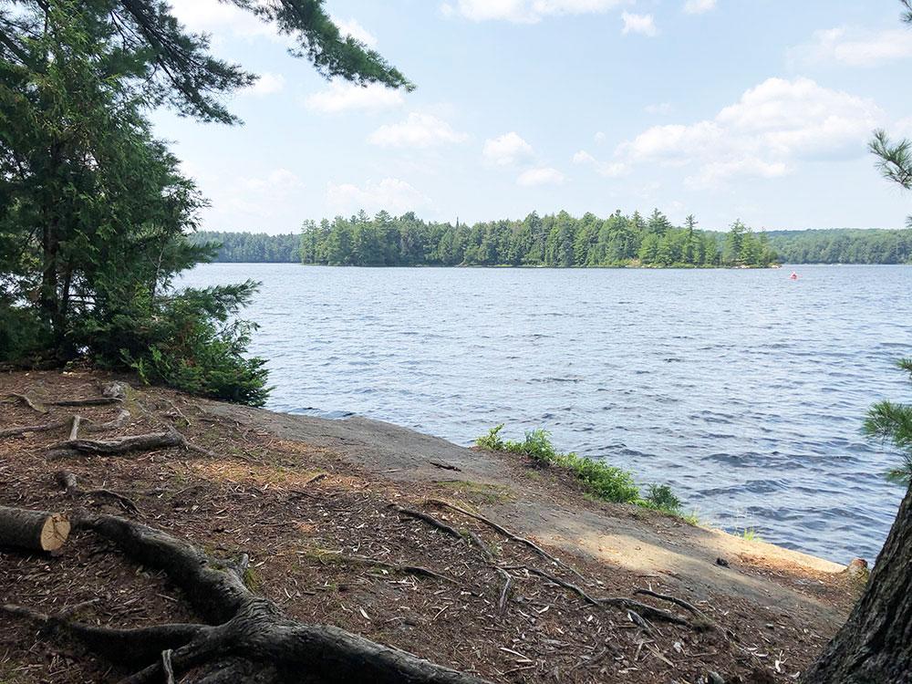 Little Trout Lake Campsite 5 Algonquin Park front of the campsite