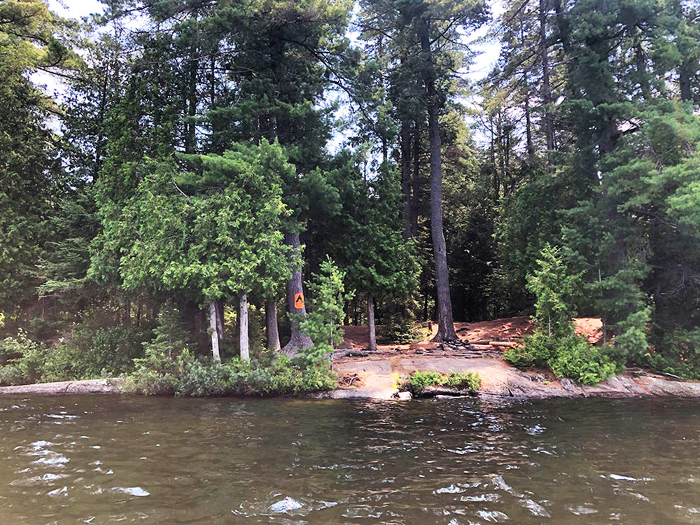 Little Trout Lake Campsite 5 Algonquin Park view of campsite from the water