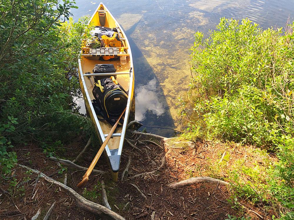 Little Trout Lake Campsite 8 Algonquin Park canoe landing