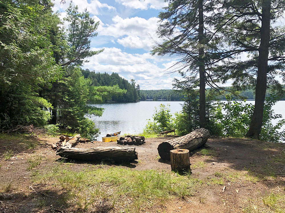 Magnetawan Lake Campsite 2 Algonquin Park interior of the campsite looking towards the water