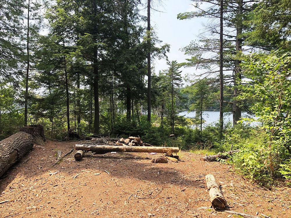 Queer Lake Campsite #1 2021 interior of campsite