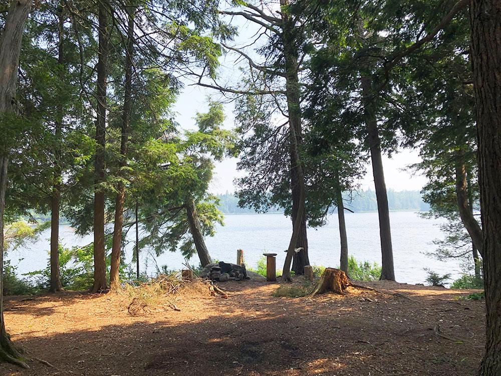 Queer Lake Campsite #10 2021 interior of the campsite