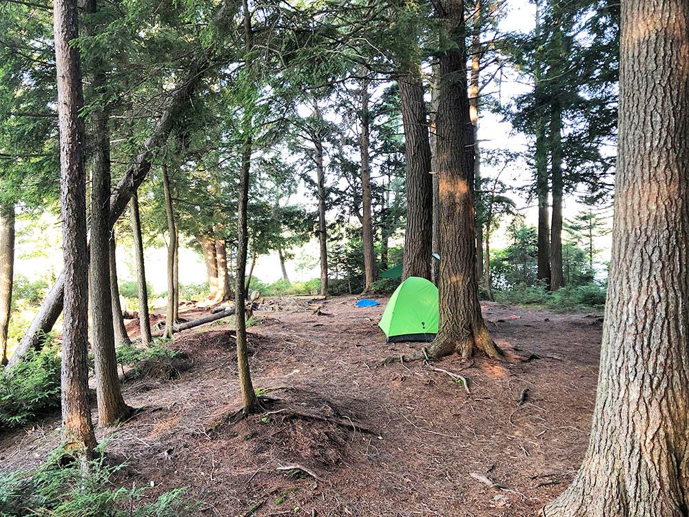 Queer Lake Campsite #4 2021 interior of the campsite