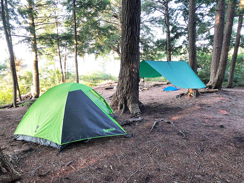Queer Lake Campsite #4 2021 green Eureka Suma tent and Aquaquest tarp
