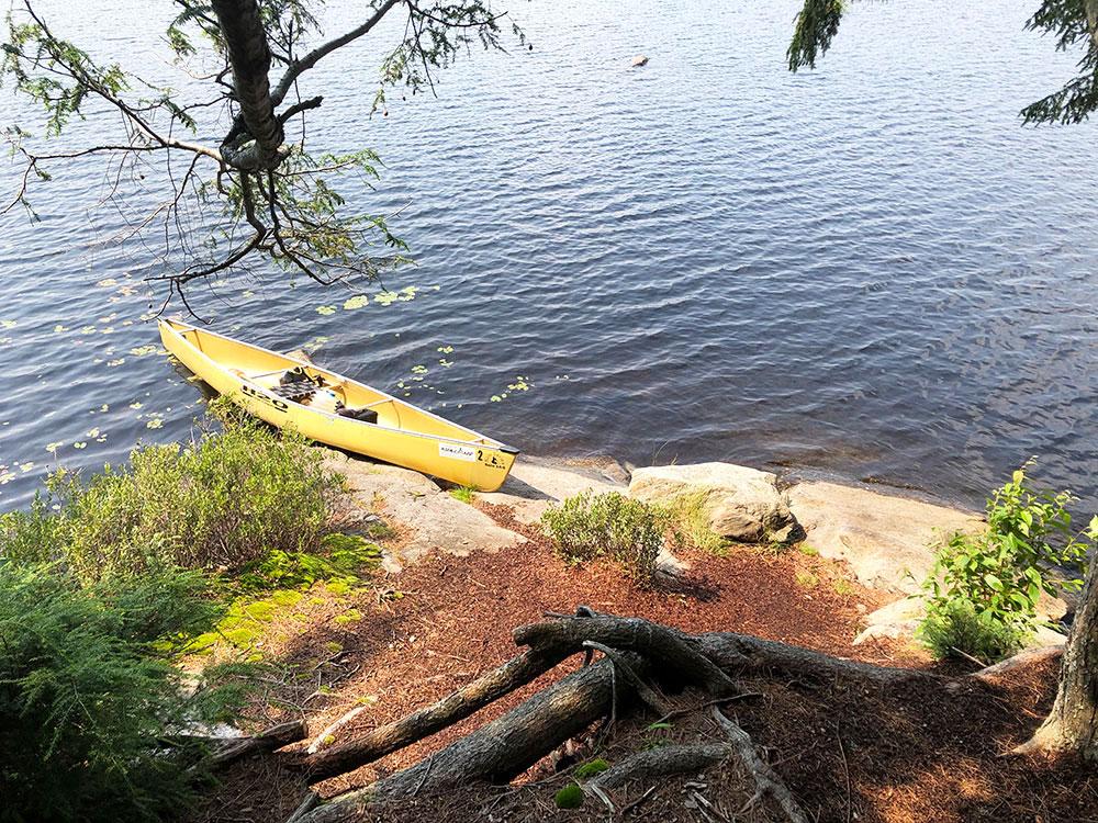 Queer Lake Campsite #8 2021 canoe landing