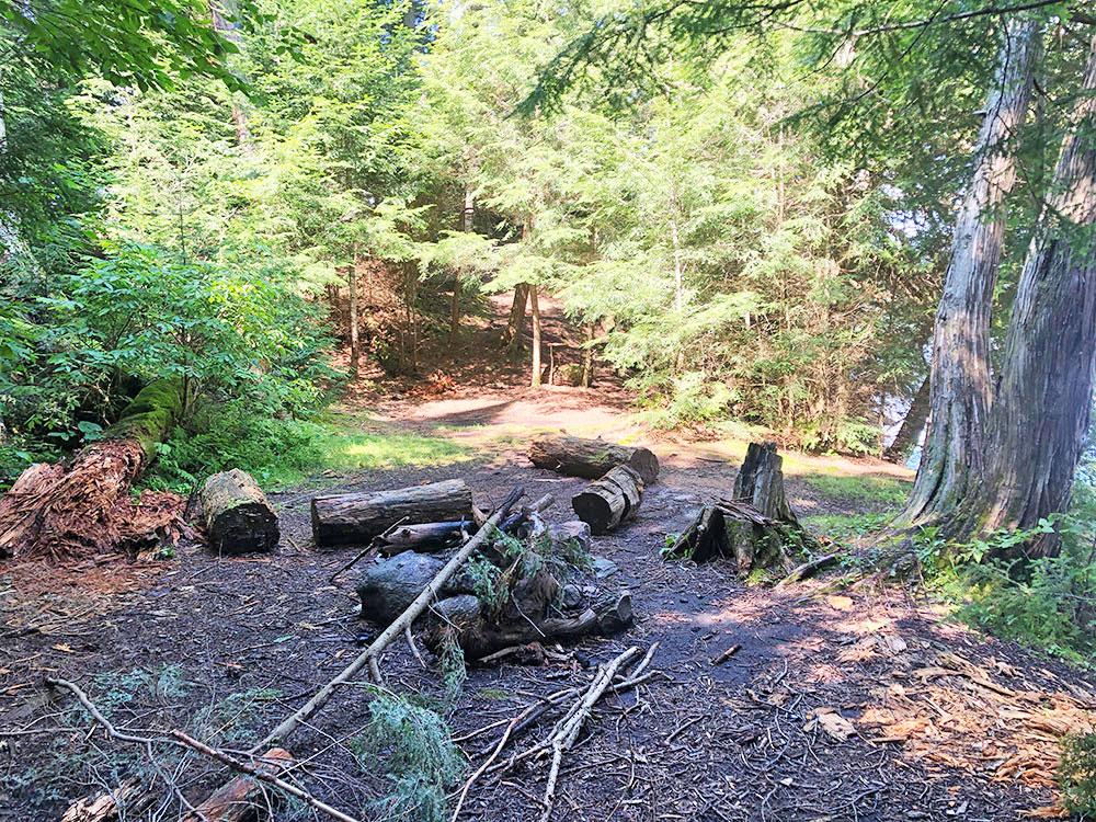 Ralph Bice Campsite 12 Algonquin Park interior of the campsite