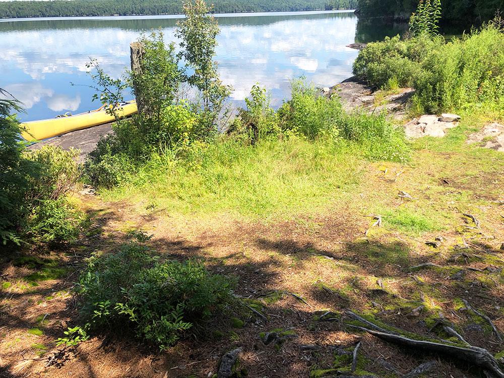 Ralph Bice Campsite 13 Algonquin Park small tent spot option