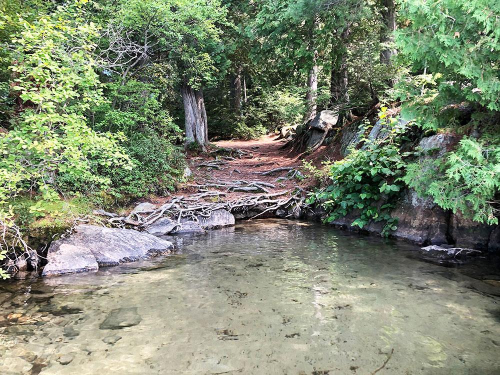 Ralph Bice Campsite 4 Algonquin Park canoe landing