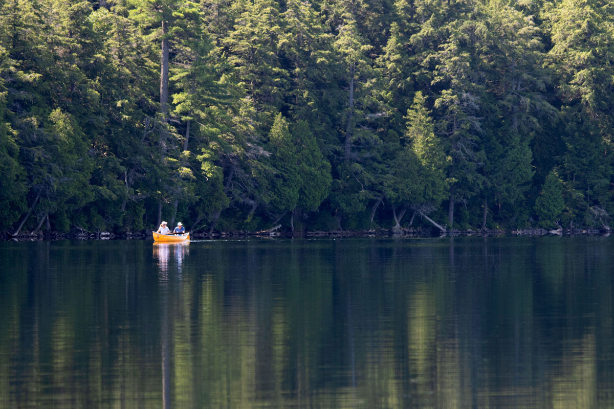 Canoeing on Ralph Bice Lake in Algonquin Park July 2021